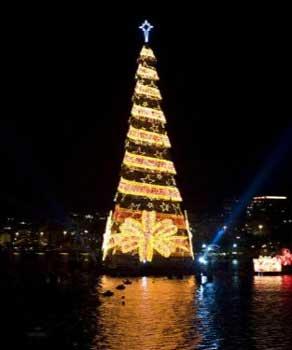 iluminado el rbol de navidad flotante ms grande del mundo