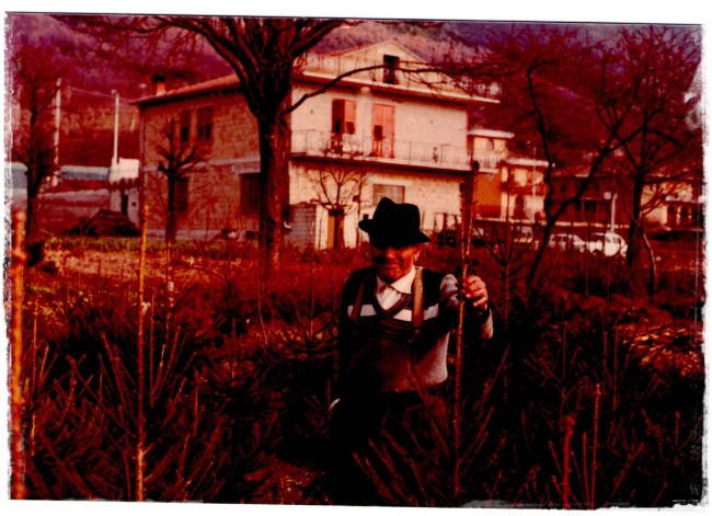 Abuelo 1982