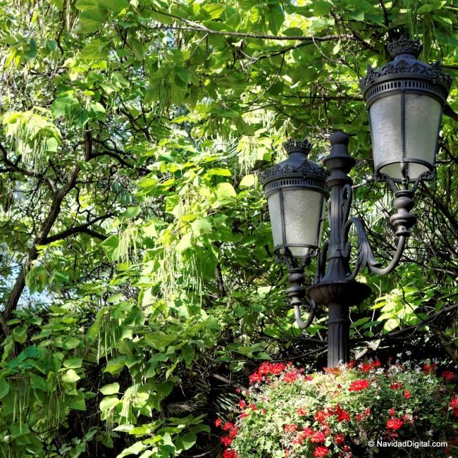 paseo-recoletos-verano-flores-madrid