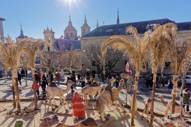 camellos-monasterio-escorial