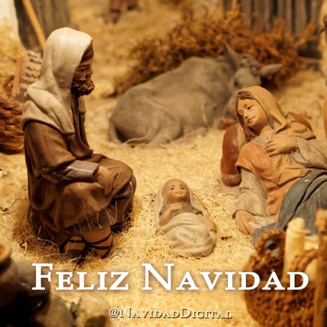 christmas-navidad2014-misterio-2