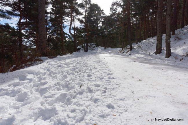 camino-nevado