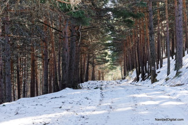 paseo-guadarrama-nevado
