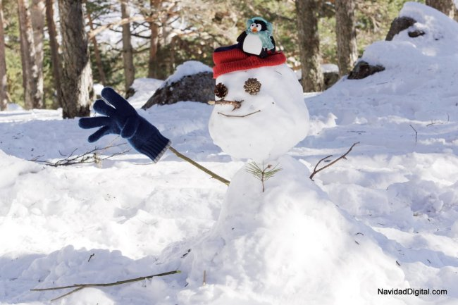 pingu-frosty-nieve-guadarrama