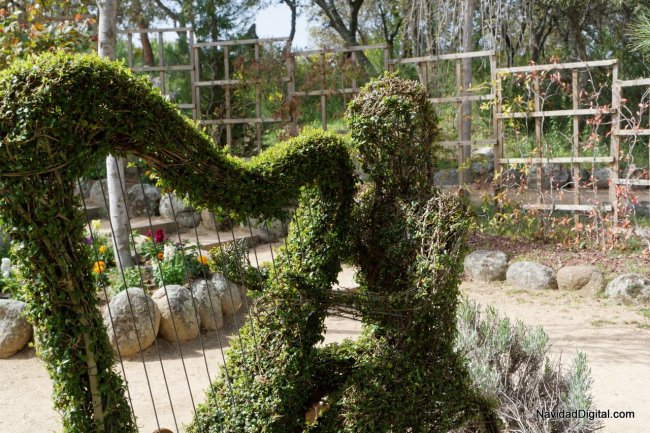 arpa-bosque-encantado