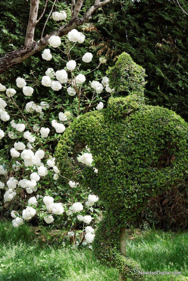 genio-lampara-bosque-encantado