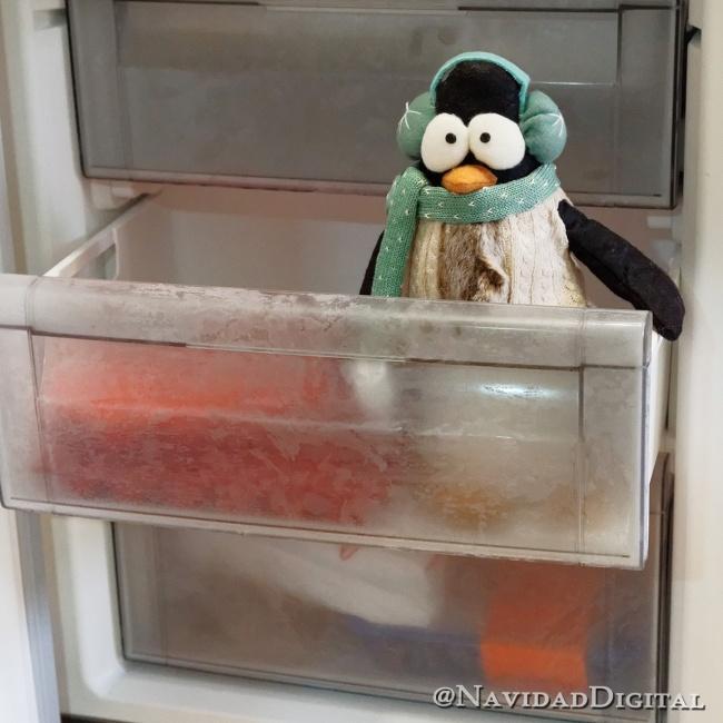 feliz24-pingu-congelador
