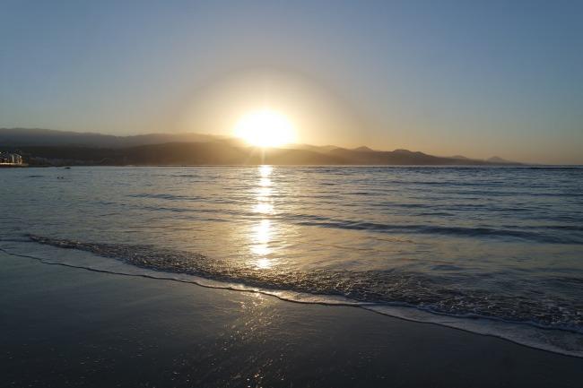 cosmopolilla_gran_canaria_playa