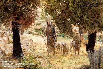 paseo-bosque-belen-alcala-5551