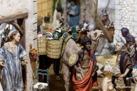juguetes-bicicleta-camello-dsc01460_dxo