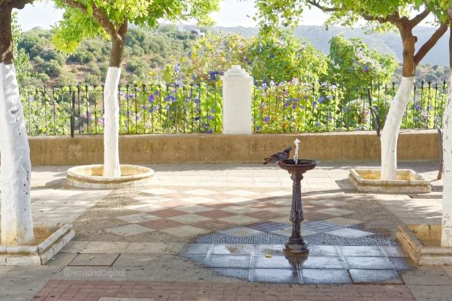 paloma-patio-naranjos-fuente.jpg