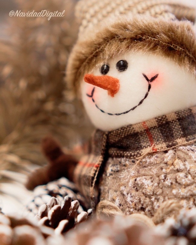 frosty-otoño-feliz24.jpg
